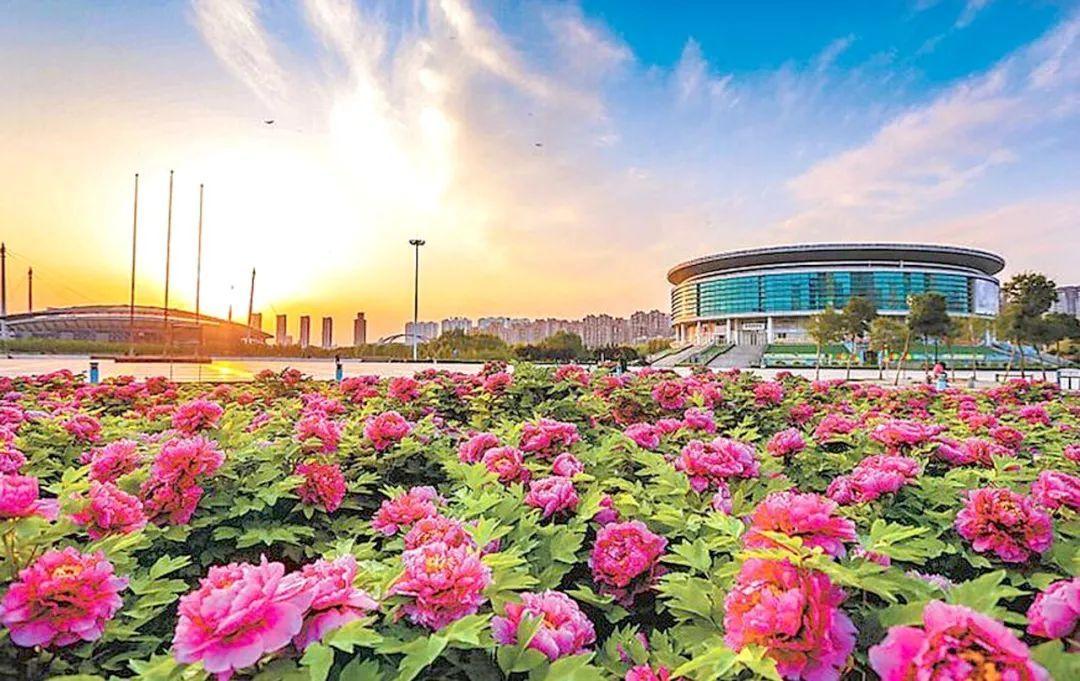 阳春三月,2019最牛最专业的旅游专列燃爆你的朋友圈!图片