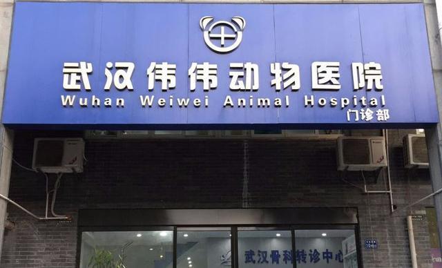 武汉宠物医院大汇总,值得收藏