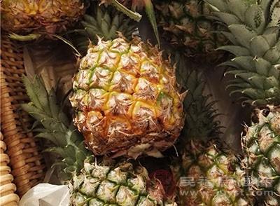 凤梨和菠萝的区别 这样辨别更准确 网络快讯 第1张