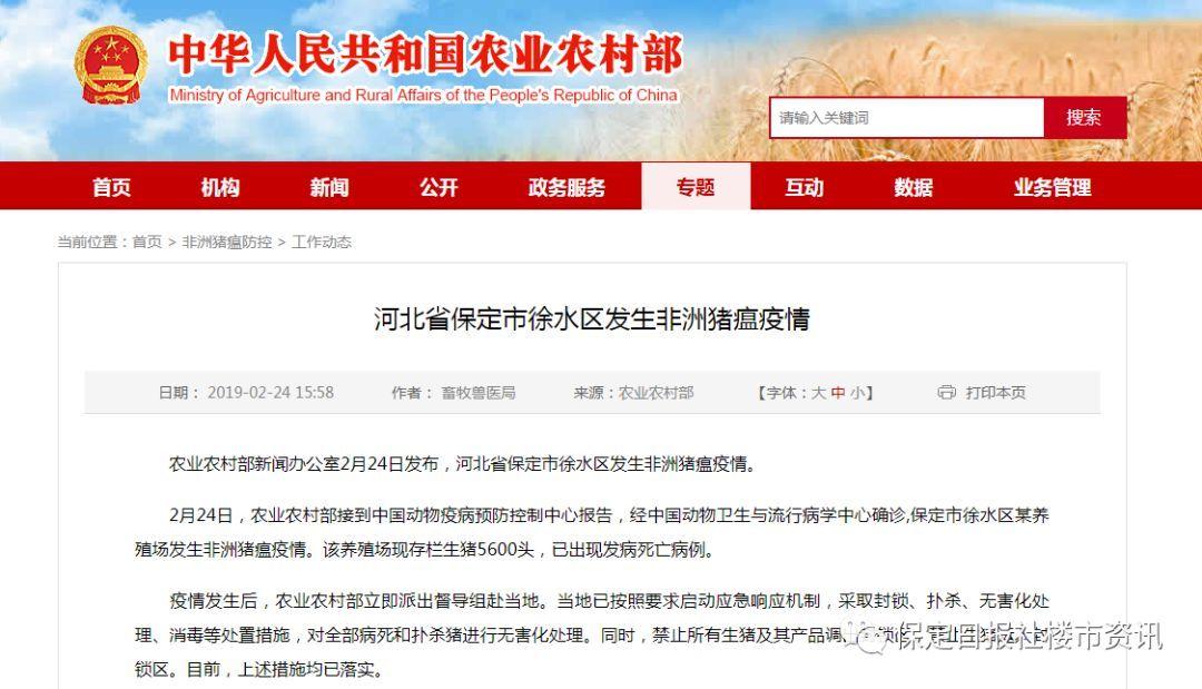 河北省保定市非洲区发生徐水疫情蛏子,专家解海鲜大猪瘟怎么炒图片