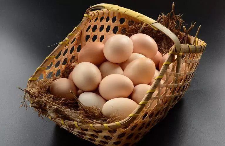 鸡蛋保护装置的原理_鸡蛋保护装置简易图
