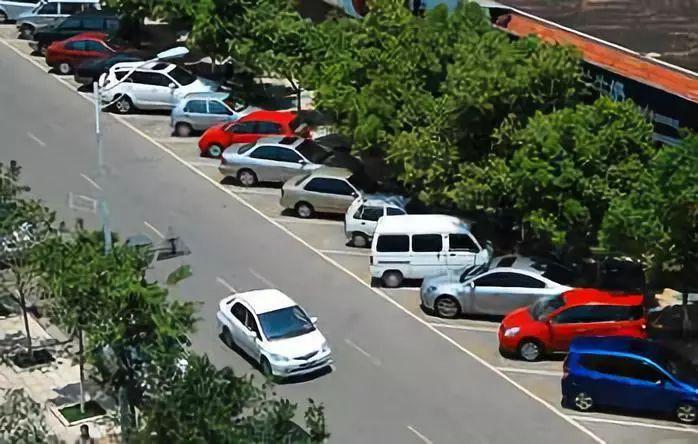 生态型停车场的设计原理与施工秘笈 (图7)