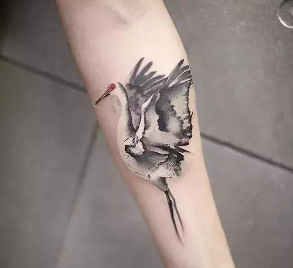 都会选择仙鹤纹身图案, 纹在自己的身上.