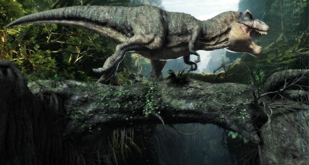 霸王龙的前肢其作用可能远比我们想象中的更大