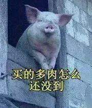 80后宝妈:假如没有养多肉,生活该有多无聊!