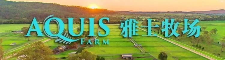 """Aquis雅士牧场赛马新闻:赛马""""海战转折""""登顶尖纯血马榜单第五"""