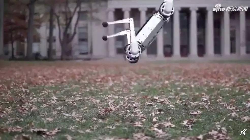 首个活体机器人怎么回事?首个活体机器人背后的真相
