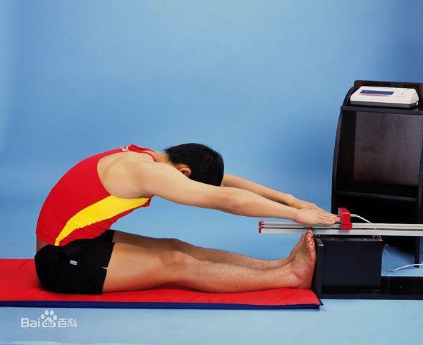 减肥瘦身运动图片