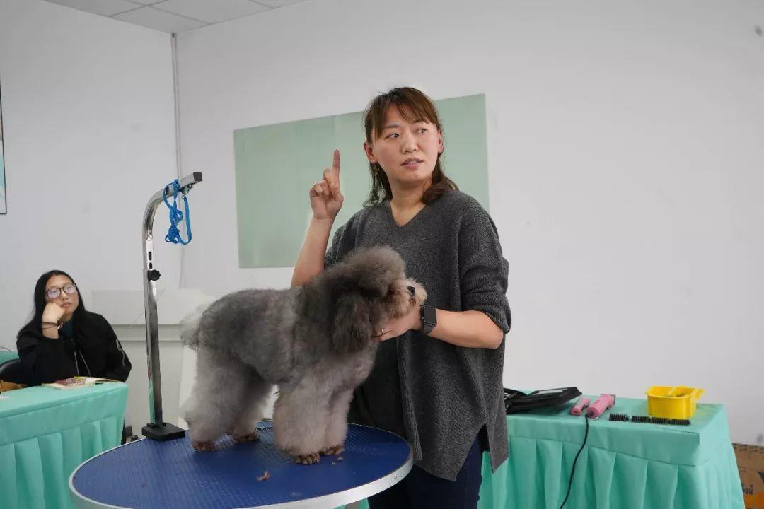 广州针灸培训速成班