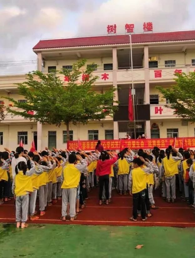 毛阳中心学校