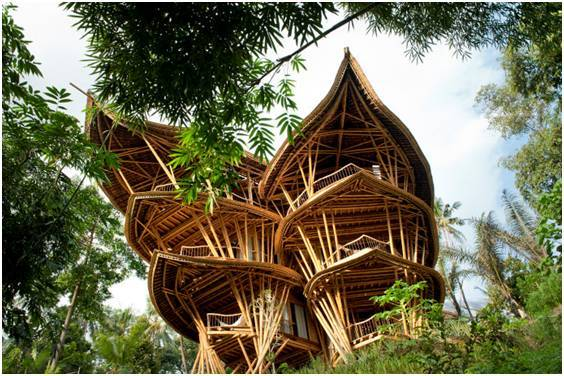 """""""竹""""够创意:竹元素与景观建筑的完美"""