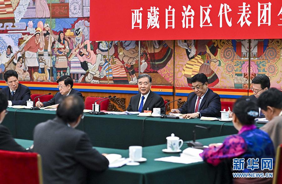 汪洋参加西藏代表团审议