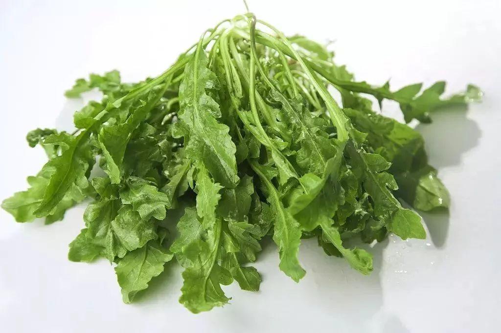 多吃这四种草,少吃很多药,很多人还不知道!_马齿苋 美食美客 第20张