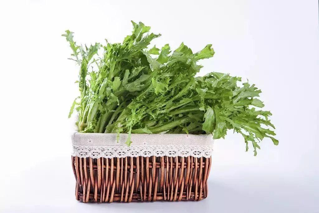 多吃这四种草,少吃很多药,很多人还不知道!_马齿苋 美食美客 第19张