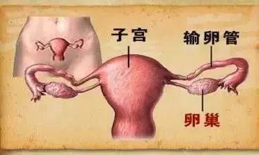 北大外科专家罗成华:警惕这几种胃癌的常见症状