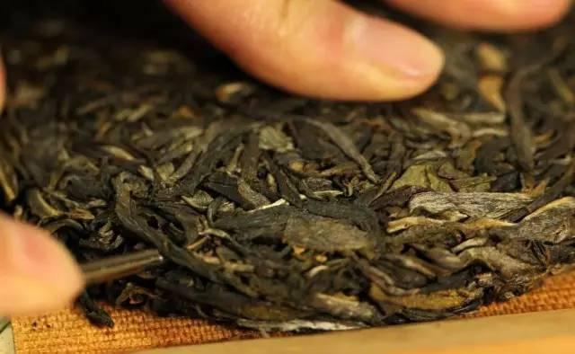 普洱茶会过期吗?