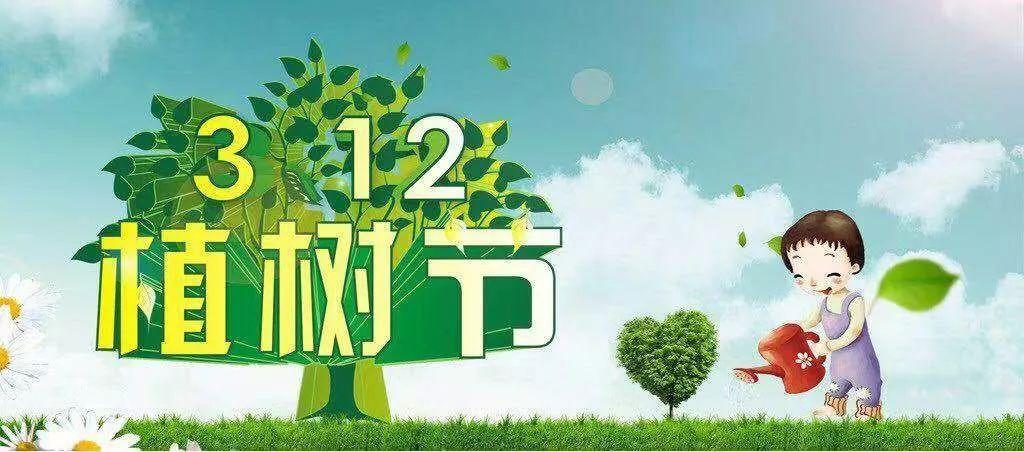 【新时代文明实践】王鲍幼儿园:拥抱绿色 亲近自然