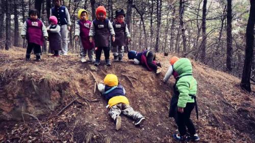 精养还是散养?北研推出CAN中国大自然教育全新教育理念