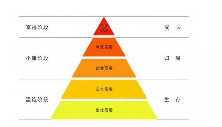 王思聪被限高消费真相是什么?王思聪被限高消费具体情况