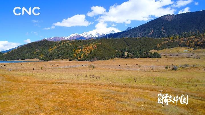 瞰中国|最·西藏醉·西藏
