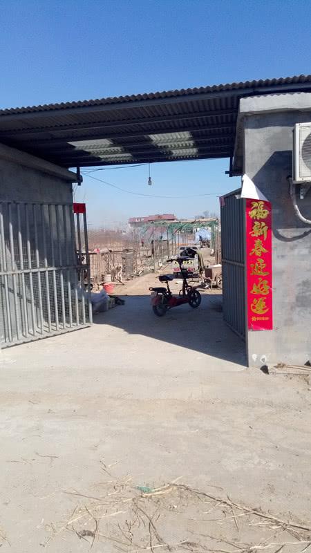 [轉載]邢臺市經濟開發區東汪鎮禁燒不力——敬請王海濤書