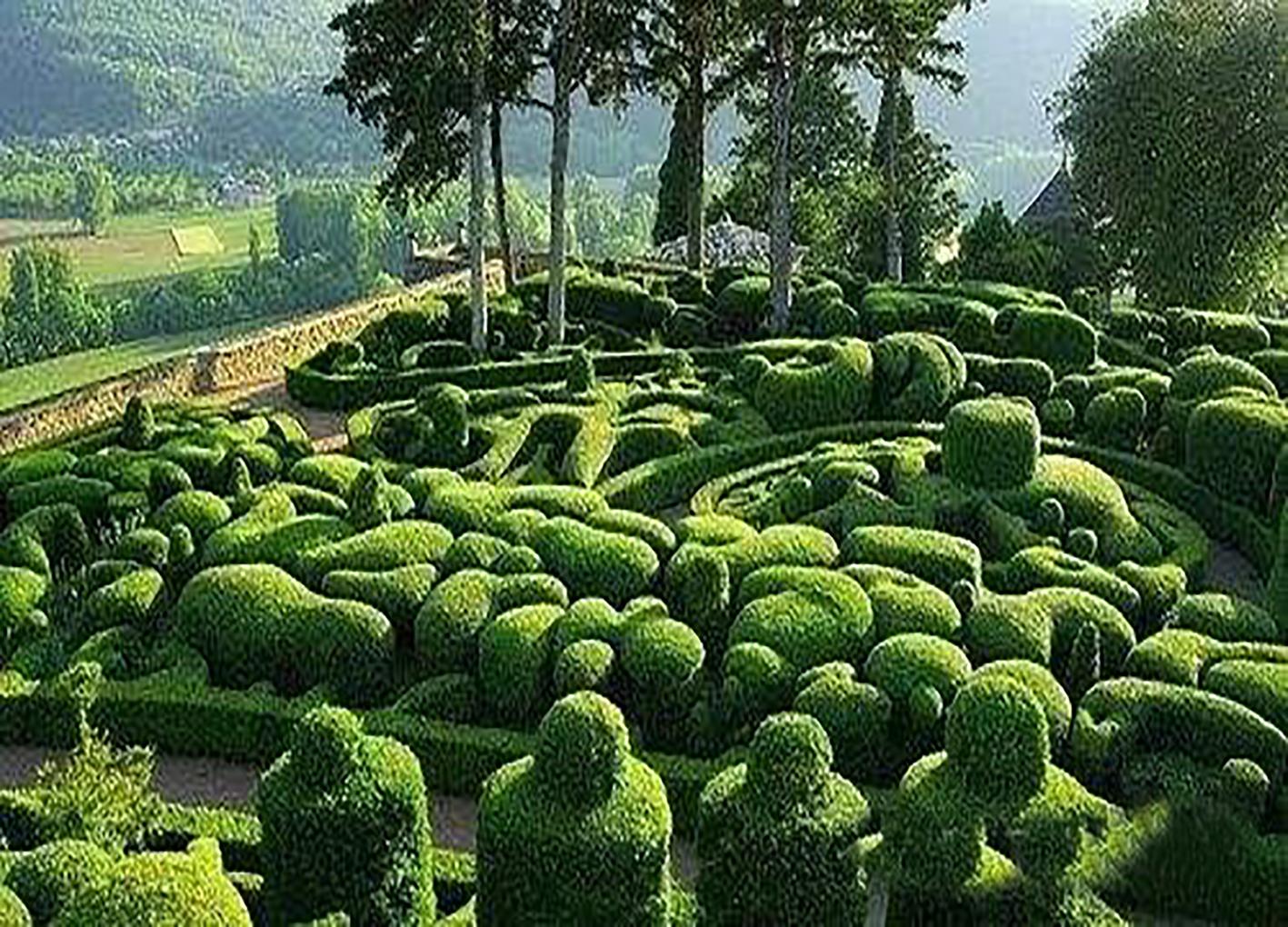 广州小区绿化养护,在城市园林建设中具有重要作用