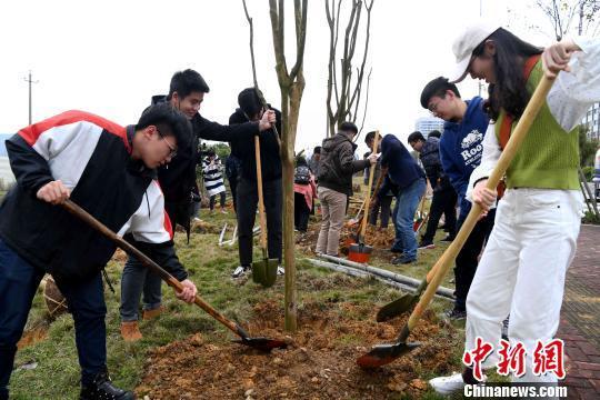 两岸青年共植海峡青年林 台湾青年谈发展