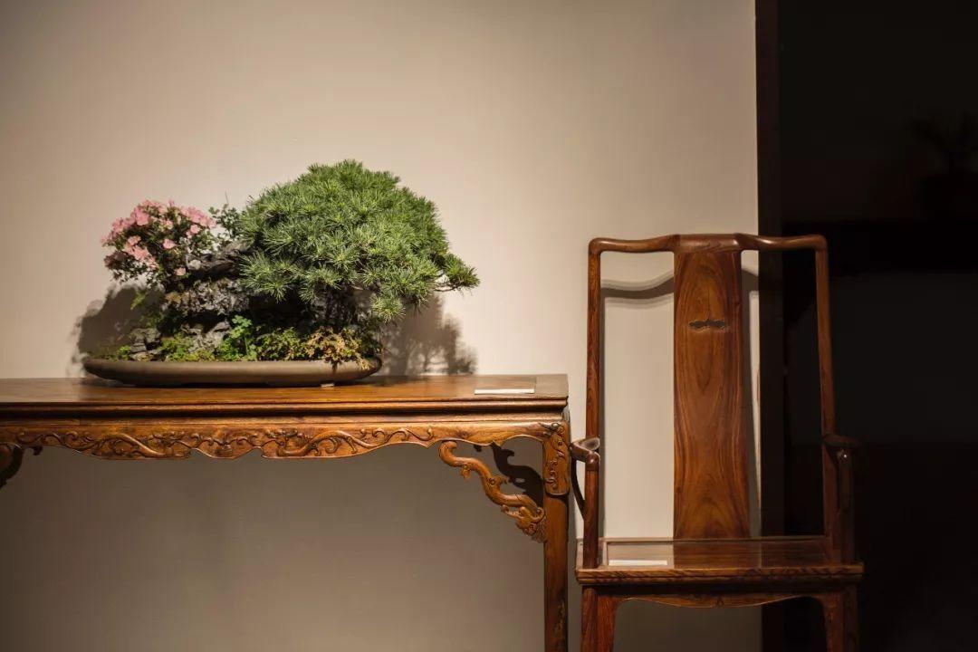 中国传统家具不仅仅是文物,更是文化。-木材价格