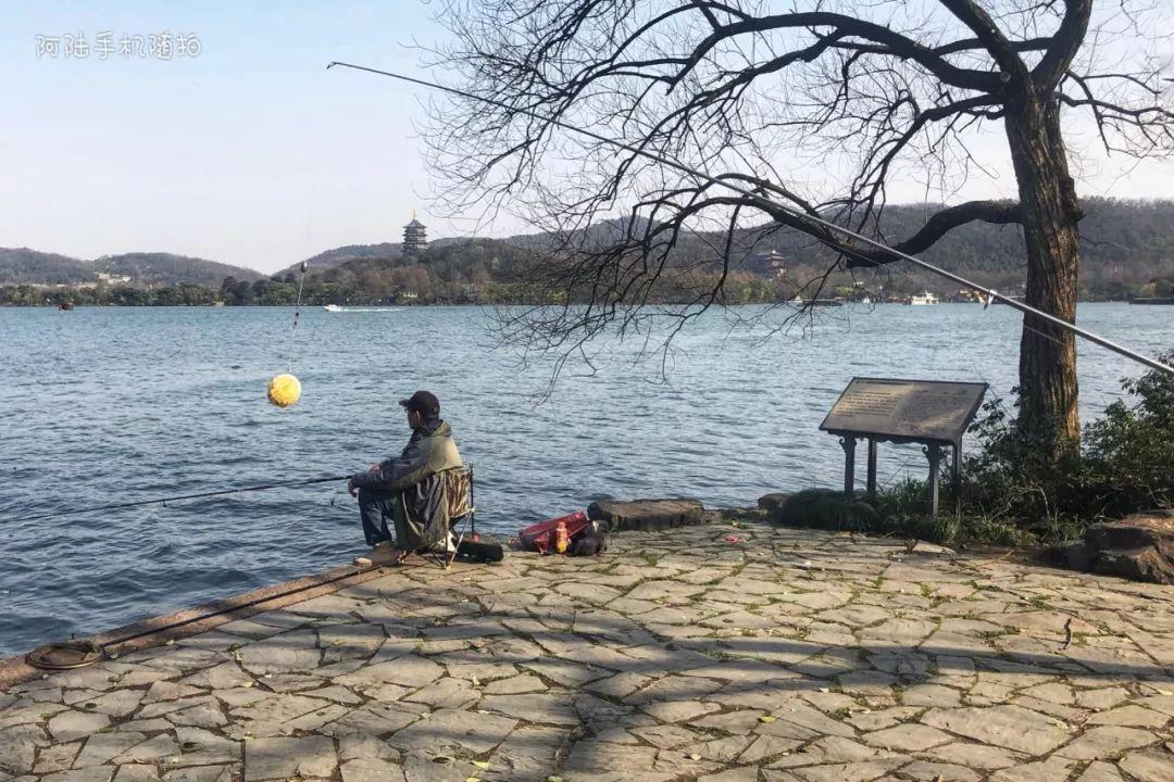下载宜居原创是最西湖城市,在杭州景区里也持证不愧手把手教你读财报微盘钓鱼图片