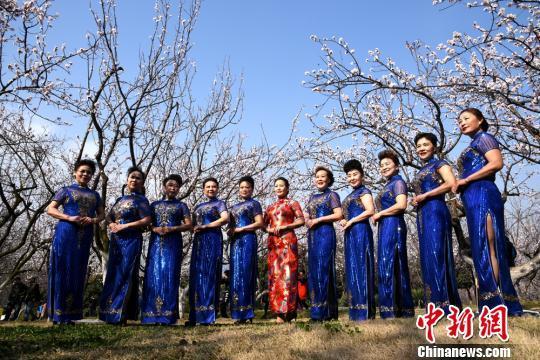 (图稿) 数万旅客相约徐州云龙湖畔咀嚼十里杏花喷鼻(6张)