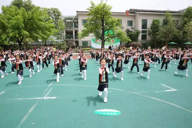 2019年深圳幼升小,你知道有多少学生和你家孩