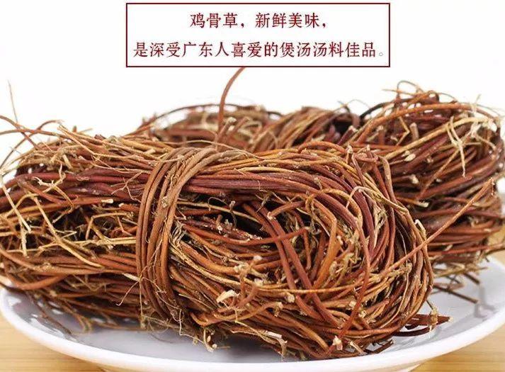客家农村这种野草,虽是煲汤佳品,但也要注意食用!