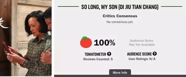 """地久天长""""新鲜度100%""""烂番茄之于华语片你不知道的那些事-"""