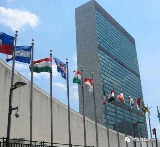 日本驻华使馆网站_联合国和各驻华使馆及机构等单位招聘信息_Finance