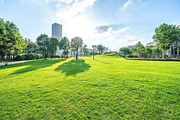 1公顷等于1万平方米_2018年,我国人均公园绿地面积14.1平方米_绿化