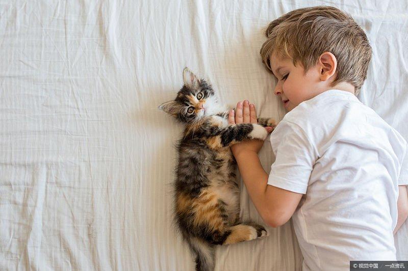 小孩被猫抓伤没多大关系?做好这3步,也算图个心安