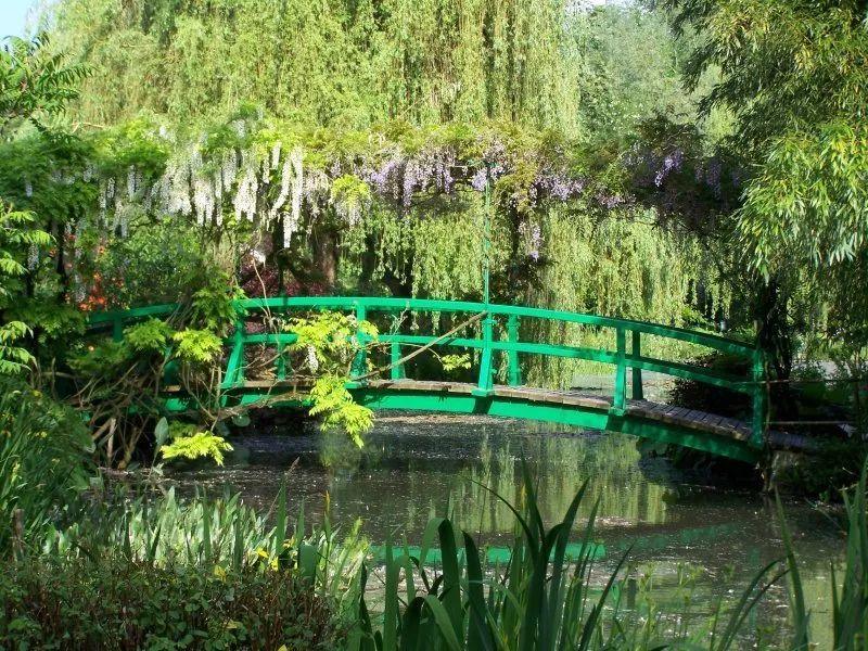 莫奈在吉维尼花园画睡莲:MoMA艺术作品系列 | 佳作推荐