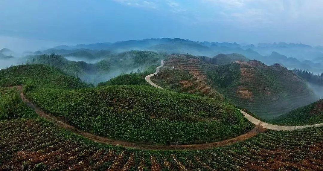威宁县有多少人口_贵州面积最大人口最多的县,人口数量居贵州各县之首,你知