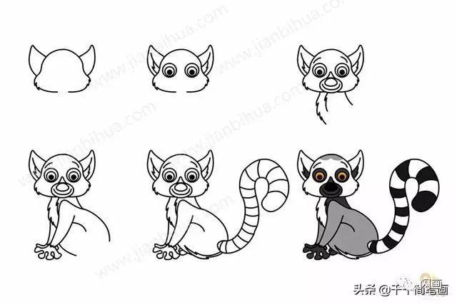 怎么画狐猴简笔画