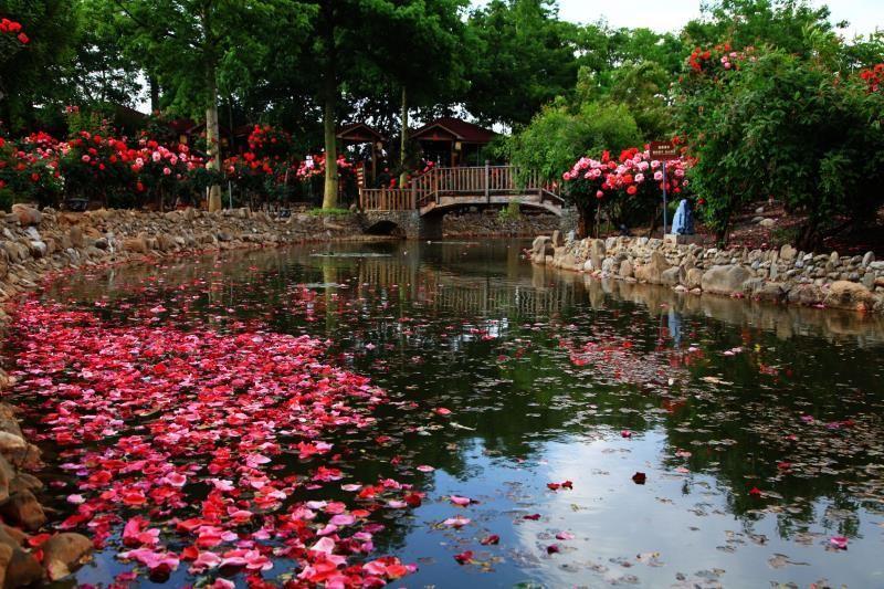 云南最适合自驾游的温泉景区风景独美我要去大自然中泡温泉!(图6)