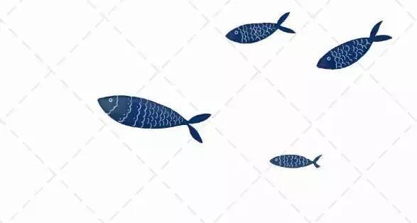 区农业执法大队打击非法捕鱼