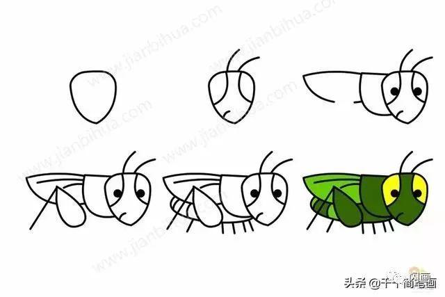 怎么画小蚂蚱简笔画