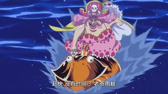 海賊王:布蕾心疼卡塔庫栗,為他擦拭身體!布蕾一直在偷看哥哥?