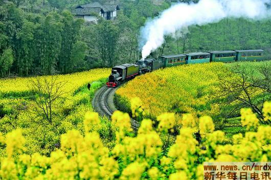 """""""开往春天""""的小火车"""