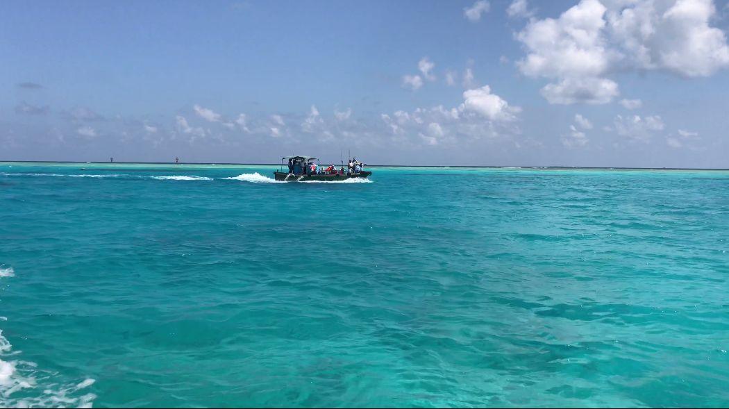 小海豚,海洋渔夫,南海探险之旅第二颗子弹——上钩!