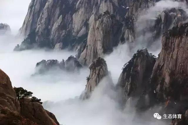 黄山四奇云海_天下第一奇山,绝美风光!四季旅游之处_黄山