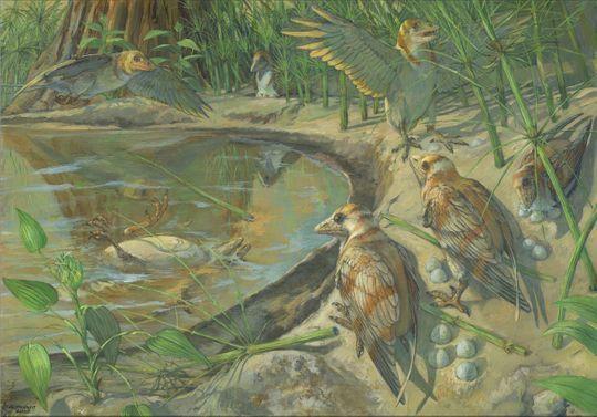 古生物学家发现首个含未产卵的古代鸟类化石