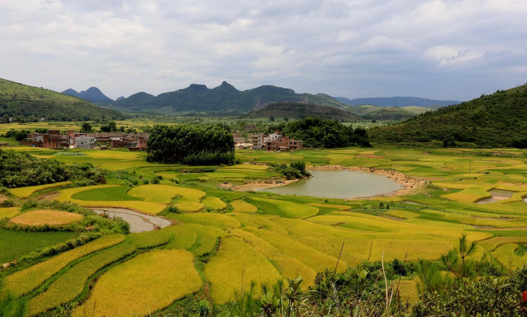 中国人均耕地_人均耕地面积图