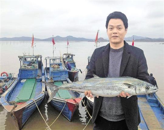 一斤100元,这条春天的鱼成新网红