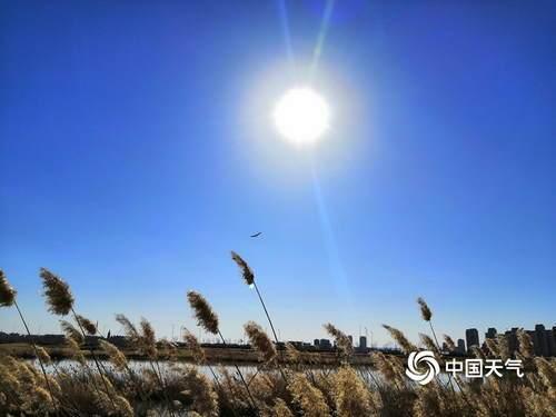 蓝天碧水 鄂尔多斯东红海子湿地景色迷人